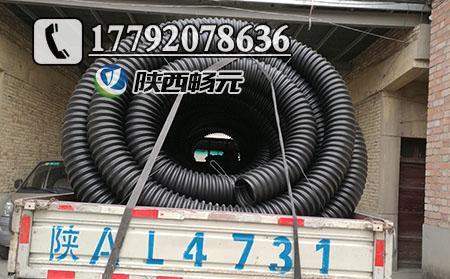 碳素波纹管价格